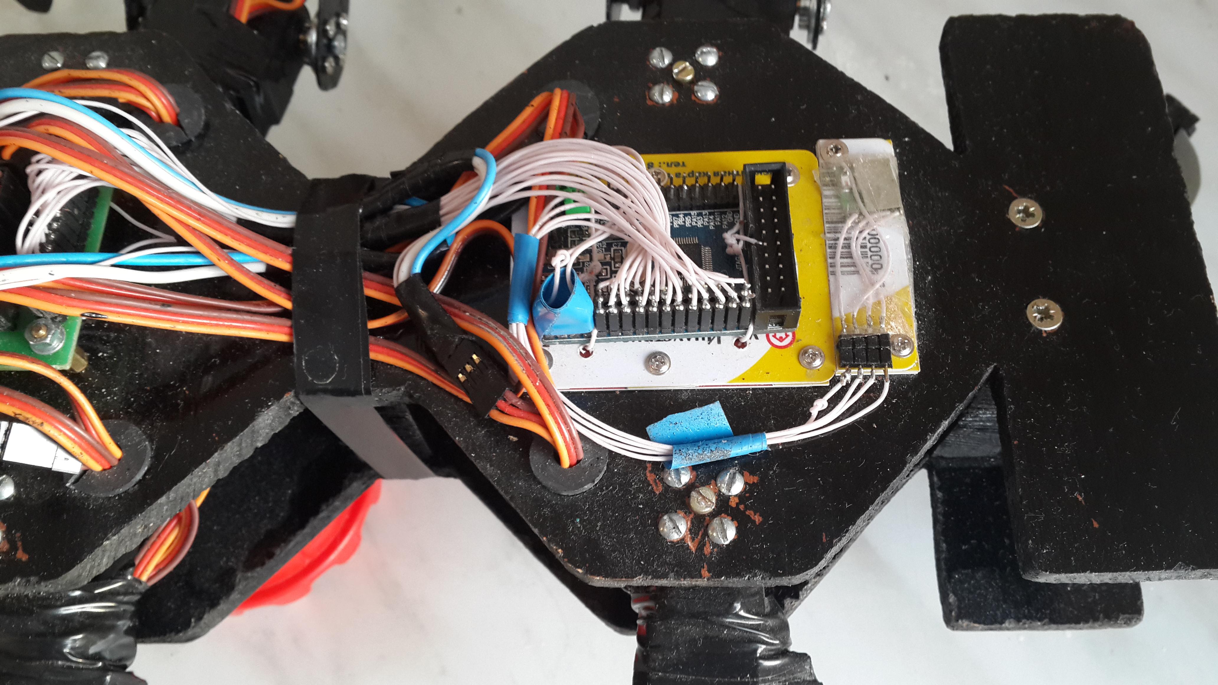 Робот-муравей: Программирование