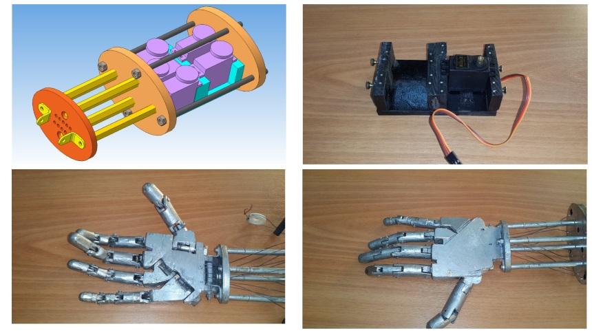 Модель и внешний вид руки